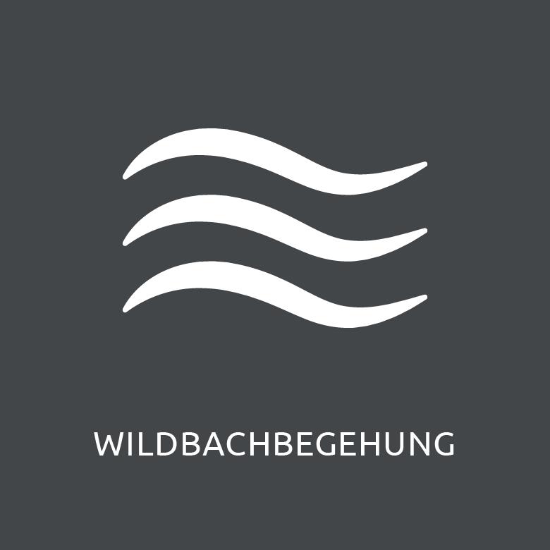 Bild-menu_Wildbachbegehung