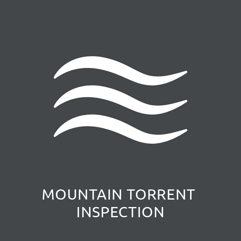 Bild-menu_torrentInspection