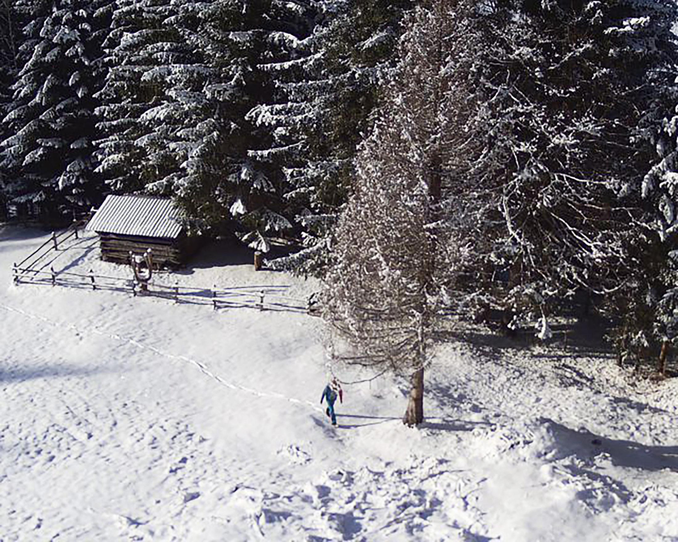 Normales Foto - Mann vor einer Hütte am Waldrand